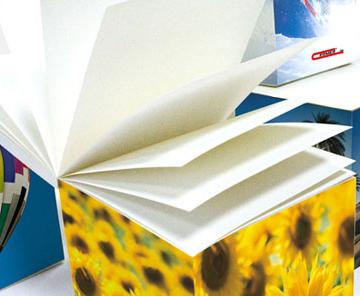 Papieren kubussen d.m.v. tampondruk bedrukt